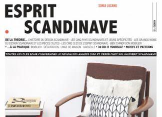 Esprit scandinave - sonia lucano