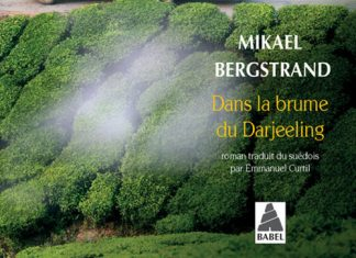 Mikael BERGSTRAND - Aventures de Goran et Yogi - 02 - Dans la brume du Darjeling